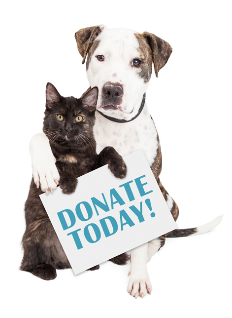 Donate Animal Shelter - Delta County Animal Shelter Located in Escanaba Michigan